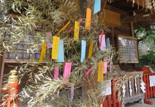 笹竹設置しました