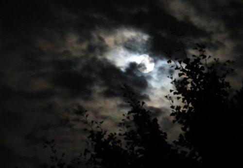 部分月食の満月夜詣り